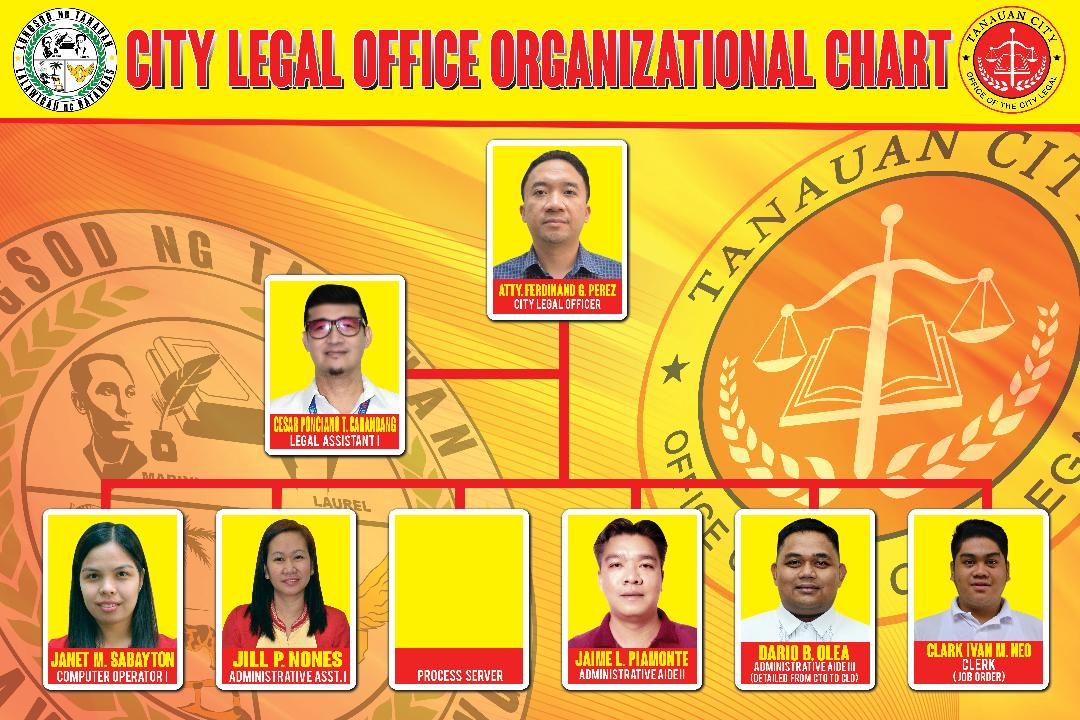City Legal Organizational Chart